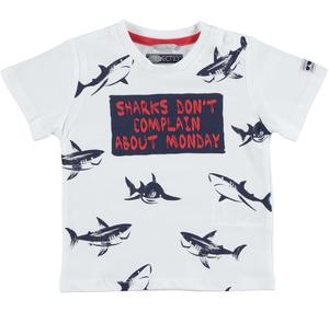 100% cotton t-shirt with sharks for boys WHITE